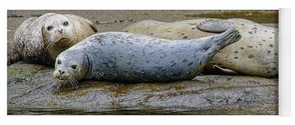 Harbor Seal Banana Pose Yoga Mat