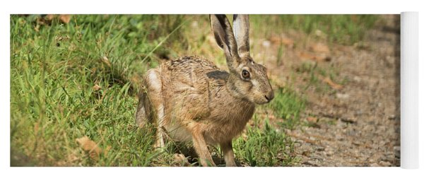 Hare In The Woods Yoga Mat