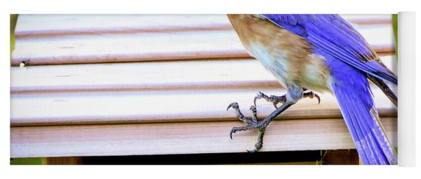 Have A Little Cricket For Breakfast Yoga Mat