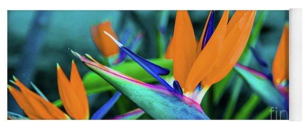 Hawaii Bird Of Paradise Flowers Yoga Mat