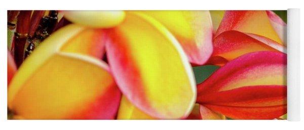 Hawaii Plumeria Flowers In Bloom Yoga Mat