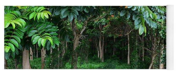 Hawaiian Blooming Cashew Nut Trees  Yoga Mat