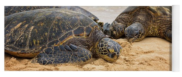 Hawaiian Green Sea Turtles 1 - Oahu Hawaii Yoga Mat