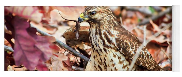 Hawk Catches Prey Yoga Mat