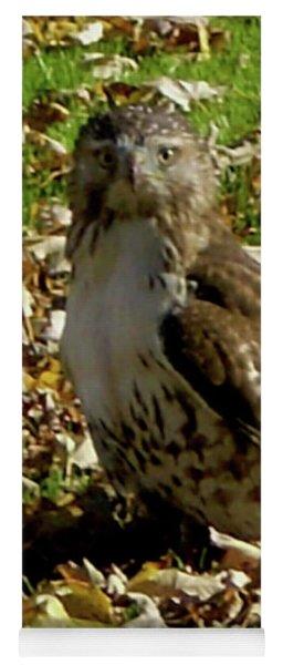Hawk Falling Leaves Yoga Mat