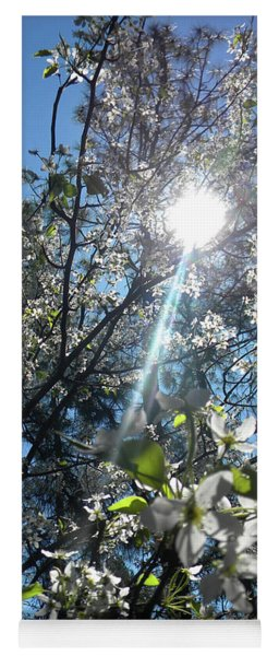 Heaven Sent Spring 2018 Yoga Mat