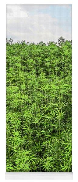 Hemp Plantation Yoga Mat