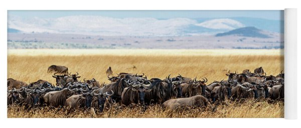 Herd Of Buffalo In Tall Kenya Grass Yoga Mat
