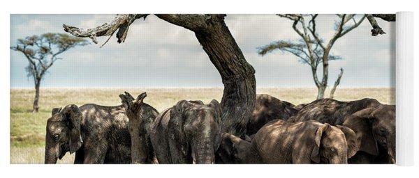 Herd Of Elephants Under A Tree In Serengeti Yoga Mat