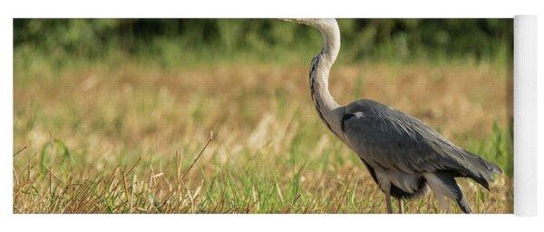 Heron In The Field Yoga Mat