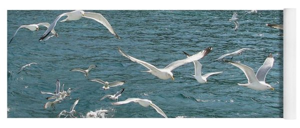 Herring Gulls At Pictured Rocks Yoga Mat