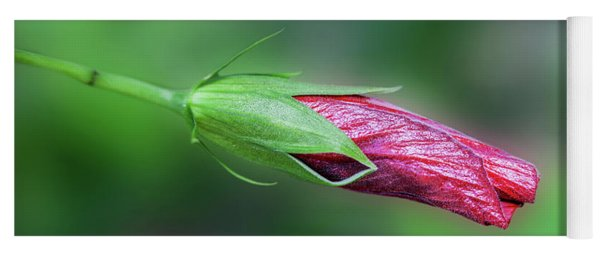 Hibiscus Bloom Yoga Mat