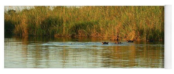Hippos, South Africa Yoga Mat
