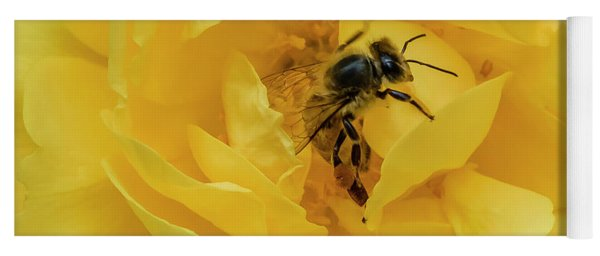 Yoga Mat featuring the photograph Honey Bee by Mark Mille