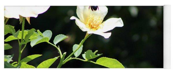 Honey Bees In Flight Over White Rose Yoga Mat