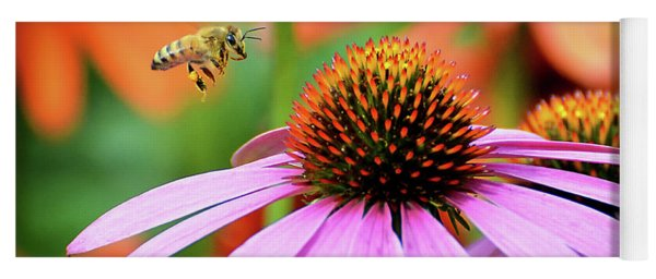 Honeybee Flying To A Coneflower Yoga Mat