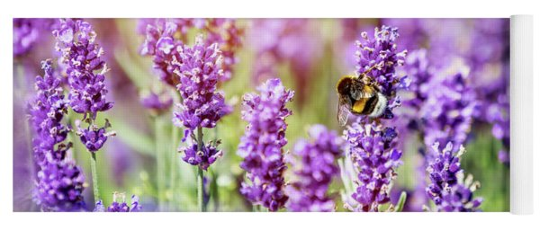 Honeybee Pollinating Lavender Flower Field Yoga Mat