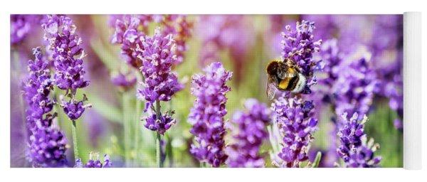 Honeybee Pollinating Lavender Flower Field Yoga Mat