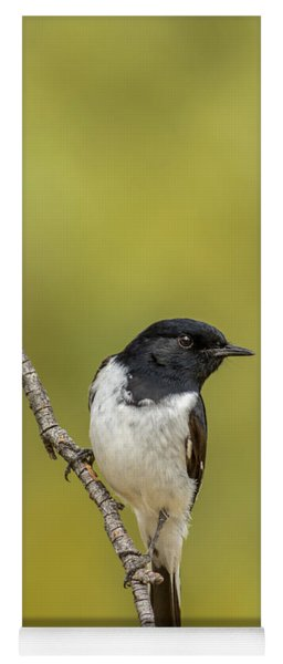 Hooded Robin Yoga Mat