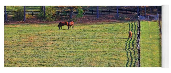 Horse Country # 2 Yoga Mat