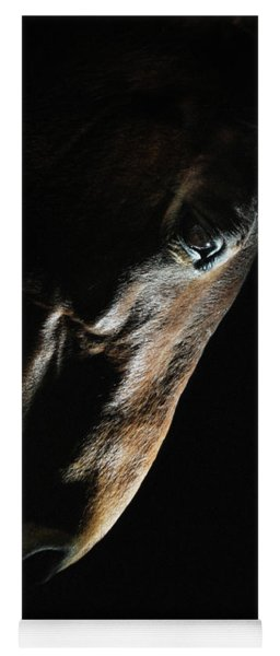 Horse Head Strobist Art Portrait Yoga Mat