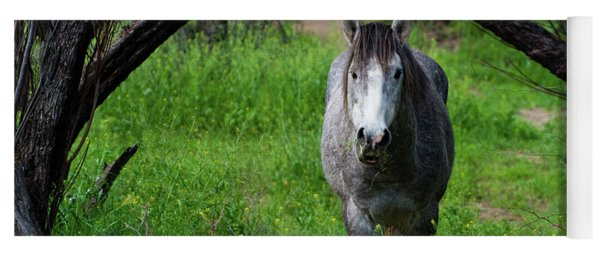 Horse's Arch Yoga Mat