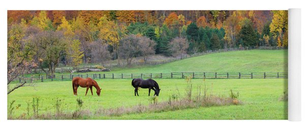 Horses Contentedly Grazing In Fall Pasture Yoga Mat