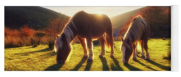 Horses In Austigarmin Yoga Mat