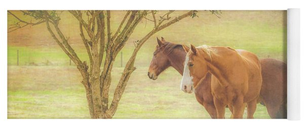 Horses In The Meadow Yoga Mat