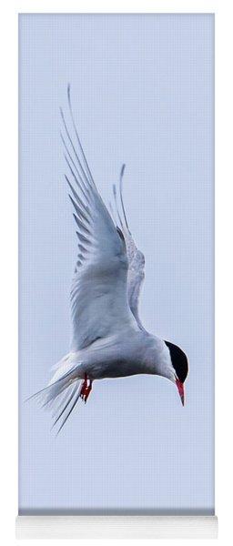 Hovering Arctic Tern Yoga Mat