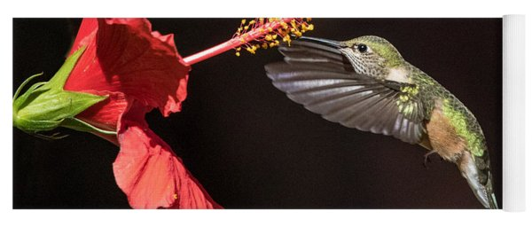 Hummingbird And Hibiiscus Yoga Mat