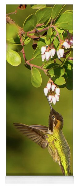 Hummingbird And Manzanita Blossom Yoga Mat