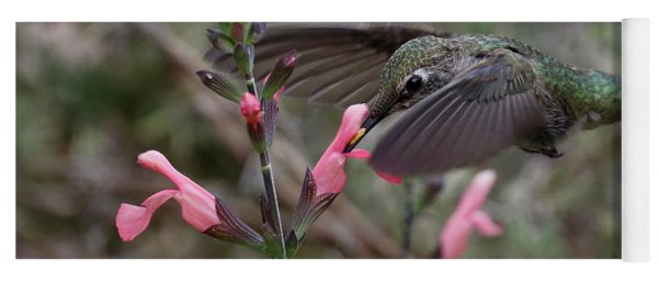 Yoga Mat featuring the photograph Hummingbird At Sage by Eyes4Nature