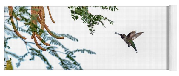 Hummingbird In Flight Isolated On White Sky Yoga Mat