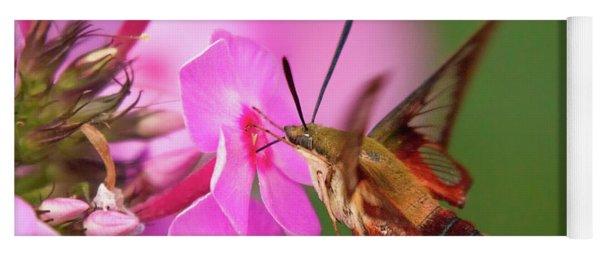 Hummingbird Moth Feeding 1 Yoga Mat