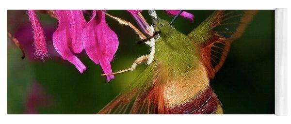 Hummingbird Moth Yoga Mat