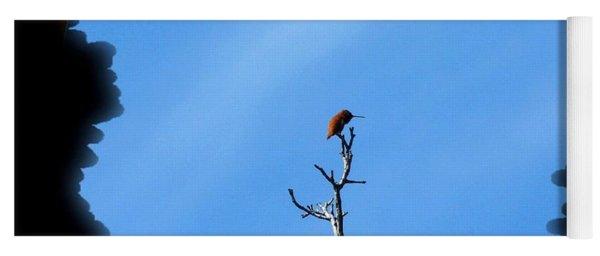 Hummingbird Optical Zoom Yoga Mat