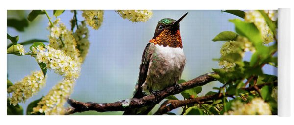 Hummingbird With Flowers Yoga Mat