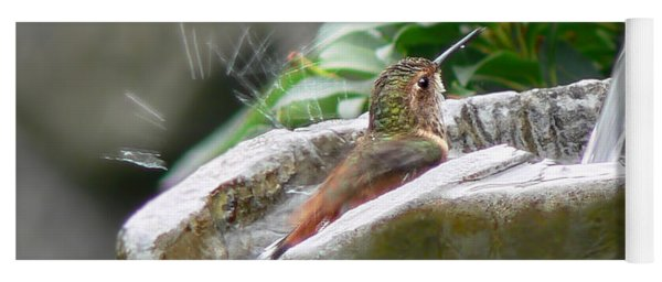 Hummingbirds Do Take Baths Yoga Mat
