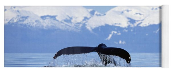 Humpback Whale Megaptera Novaeangliae Yoga Mat