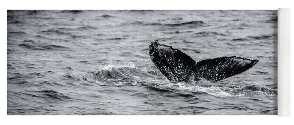 Humpback Whale Tail Yoga Mat