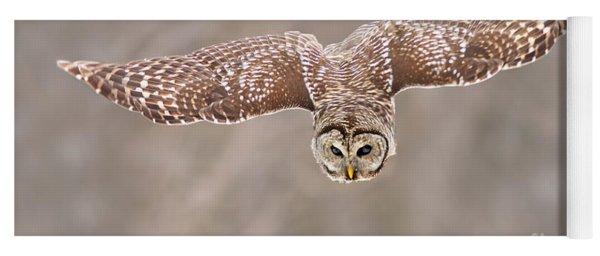 Hunting Barred Owl  Yoga Mat
