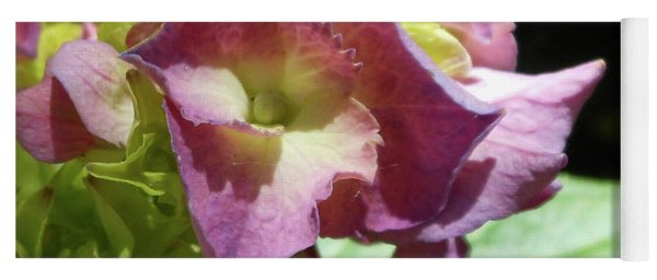 Hydrangea Flowers Fit For A Fairy Yoga Mat