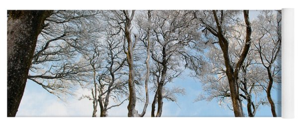Icy Trees Yoga Mat