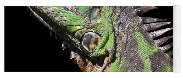 Iguana Yoga Mat