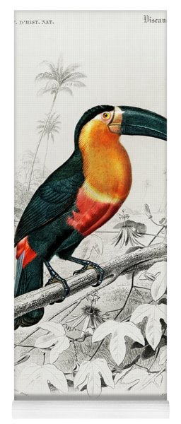 Illustrated Toucan - Ramphastos Yoga Mat