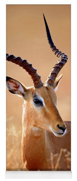 Impala Male Portrait Yoga Mat