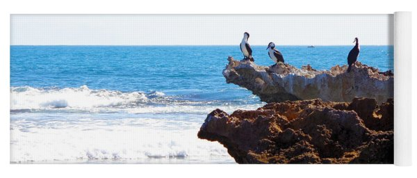 Indian Ocean Birds Resting On Rocks Yoga Mat