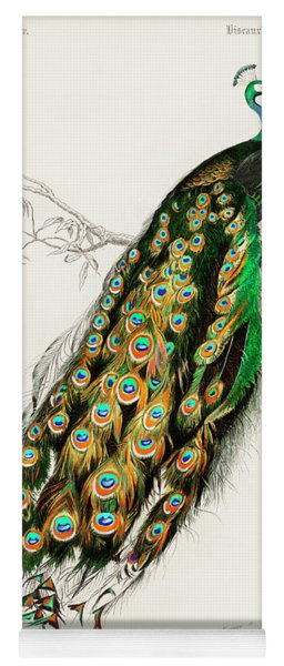 Indian Peafowl - Pavo Cristatus Yoga Mat