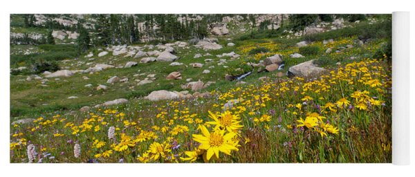 Yoga Mat featuring the photograph Indian Peaks Summer Wildflowers by Cascade Colors